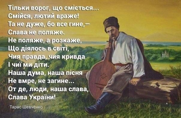 taras-shevchenko-analz-vrshv